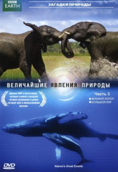 Постер к фильму – BBC: Величайшие явления природы (BBC – Nature's Great Events), 2009