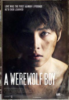 Постер к фильму – Мальчик-оборотень (Neukdae Sonyeon), 2012