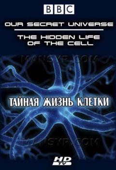 Внутренняя Вселенная: Тайная жизнь клетки (Our Secret Universe: The Hidden Life of the Cell), 2012