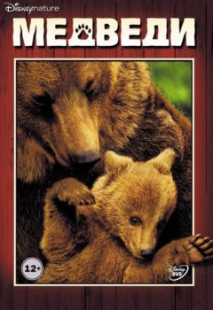 Постер к фильму – Медведи (Bears), 2014