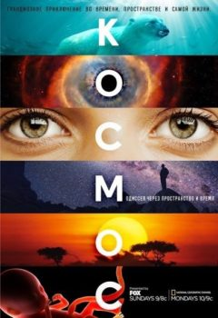 Постер к фильму – Космос: Пространство и время (Cosmos: A SpaceTime Odyssey), 2014