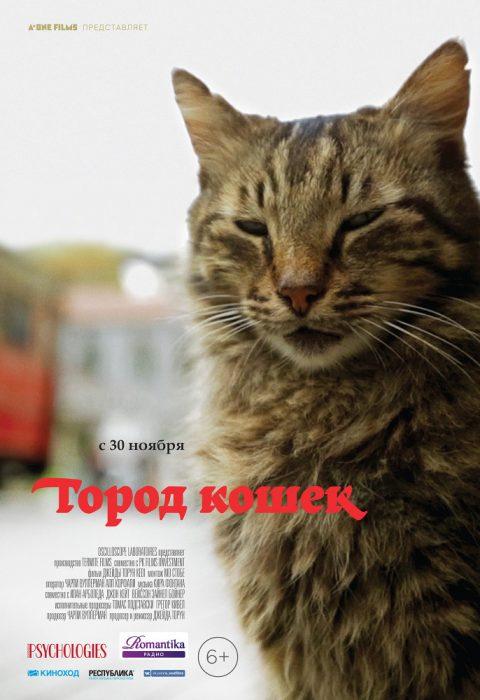 Город кошек (Kedi), 2016