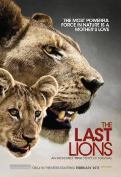 Постер к фильму – Последние львы (The Last Lions), 2011