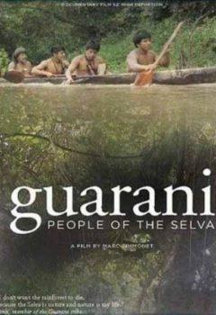 Постер к фильму – Гуарани. Люди из Сельвы (Guarani people of the Selva), 2007